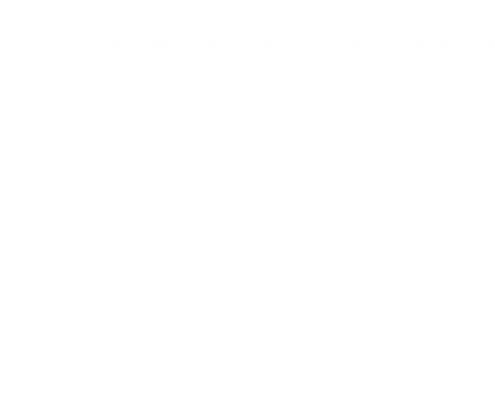 logo_dummy